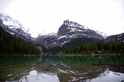 Lake O'Hara is a lake at an elevation of 2,115 m in the alpine area of Yoho National Park, in the province of British Columbia, on the western side of the Great Divide with the province of Alberta and Banff National Park to the east. The lake and the valley are accessible through a bus service that is run by Parks Canada or by a 11 km hike along a road with an elevation gain of approximately 500m. Reservations for the bus can be made up to three months in advance through the Lake O'Hara reservation line. It is strongly recommended that visitors do make reservations as all spots on the bus will book up long in advance.  The area is known for its scenery as well as its alpine hiking. The number of people who access the area by bus has been limited in order to preserve the sensitive alpine environment.