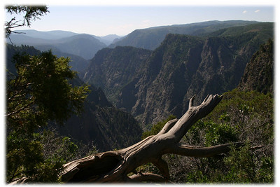 You need to see it to appreciate the awesome splendor of this gorge. Black Canyon of the Gunnison NP, CO